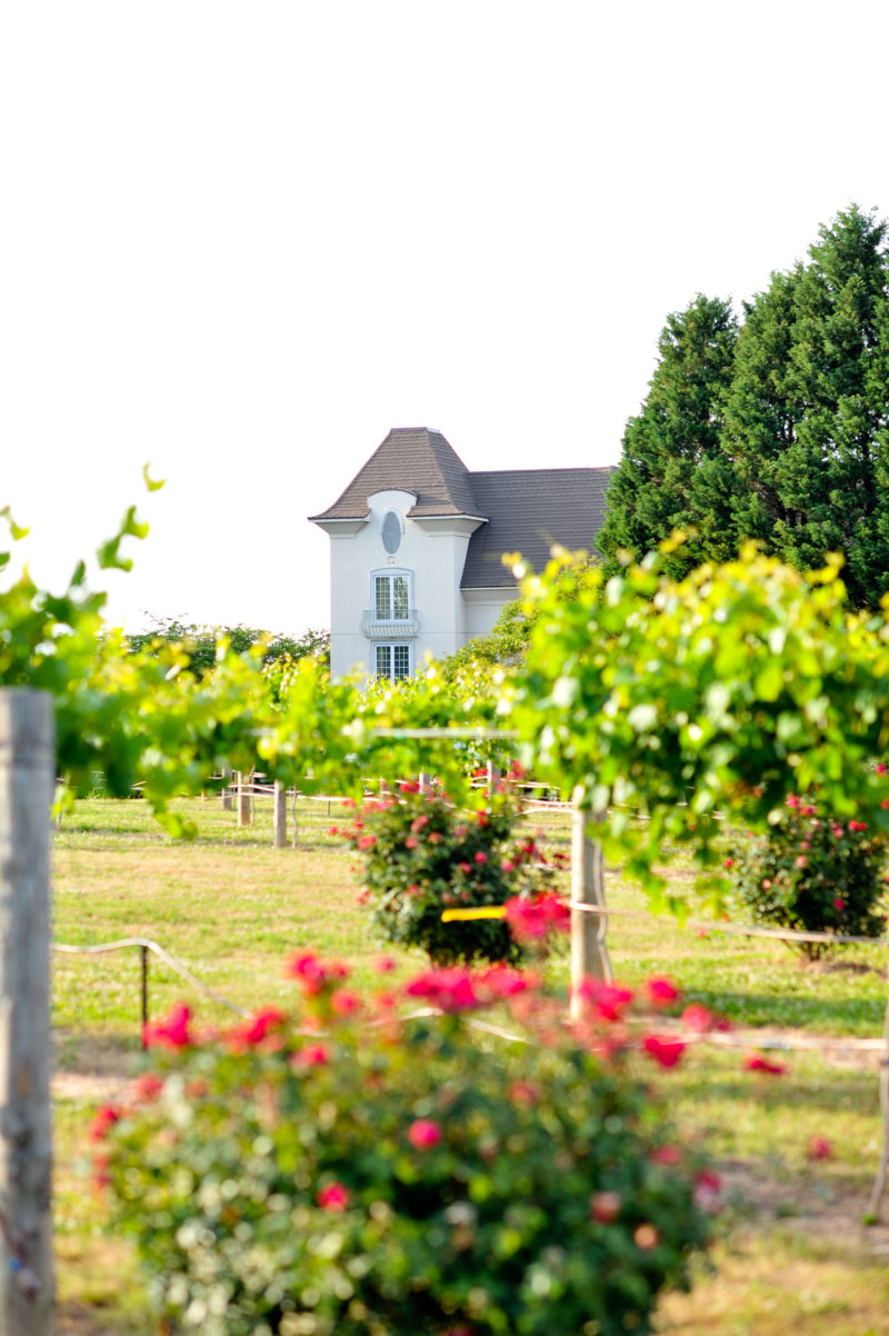 Chateau Elan Winery & Resort Review + Guide