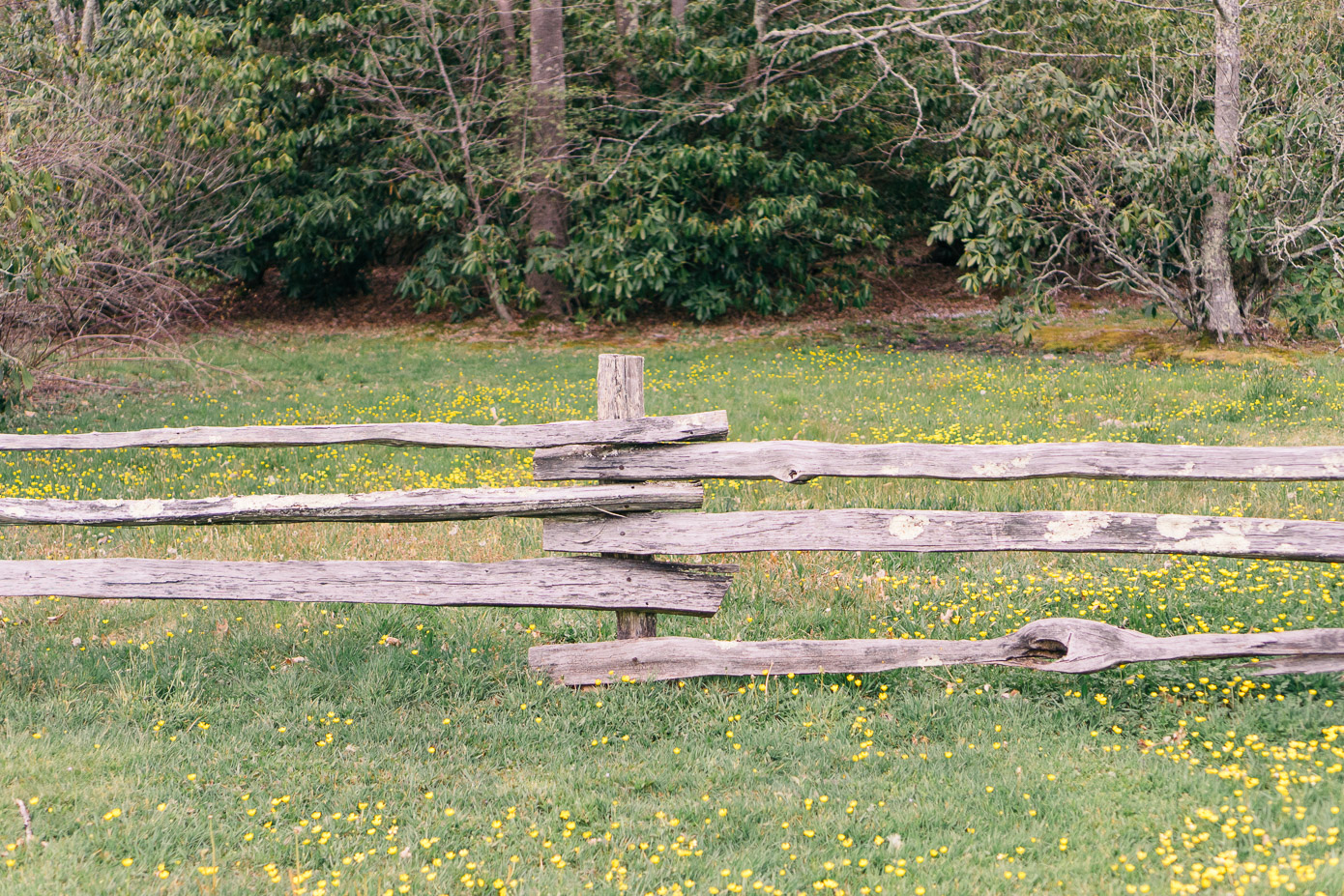 Cataloochee Ranch in Maggie Valley North Carolina | Louella Reese Life & Style Blog