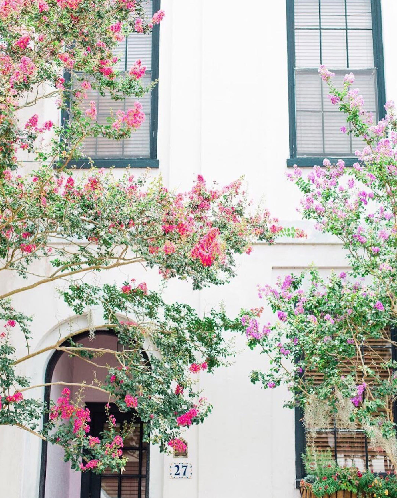 Beautiful Instagram Accounts to Follow featured on Louella Reese | Kailee DiMeglio Photo