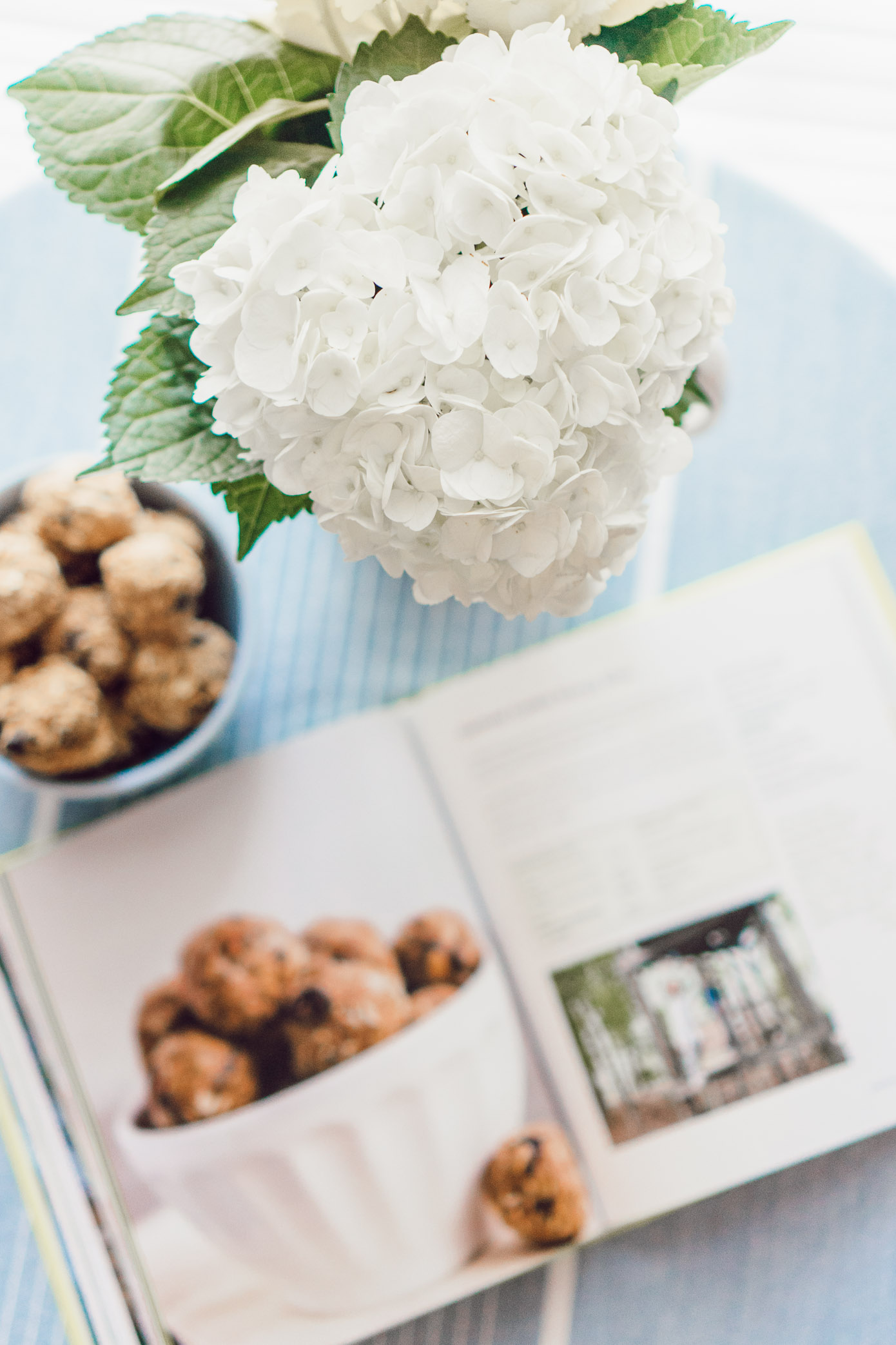 Oatmeal Raisin Energy Bites, A Healthy Cookbook You Need In Your Kitchen featured on Louella Reese Blog