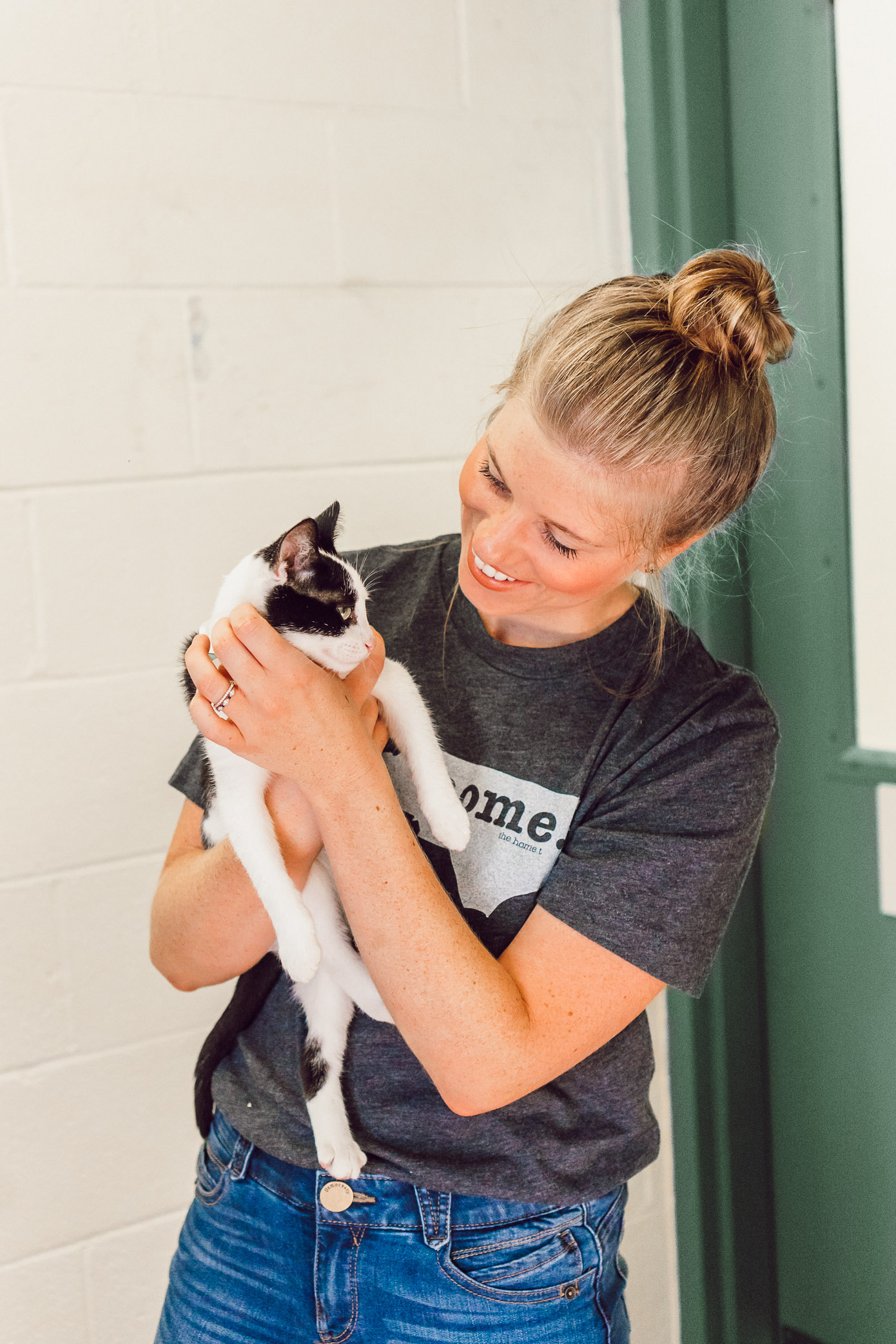 Kittens Available for Adoption in Charlotte NC | The Humane Society Charlotte featured on Louella Reese Blog