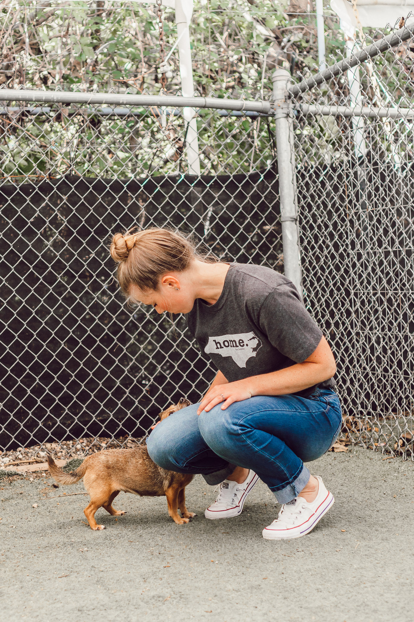 How to Help Animals in Charlotte NC | The Humane Society Charlotte featured on Louella Reese Blog