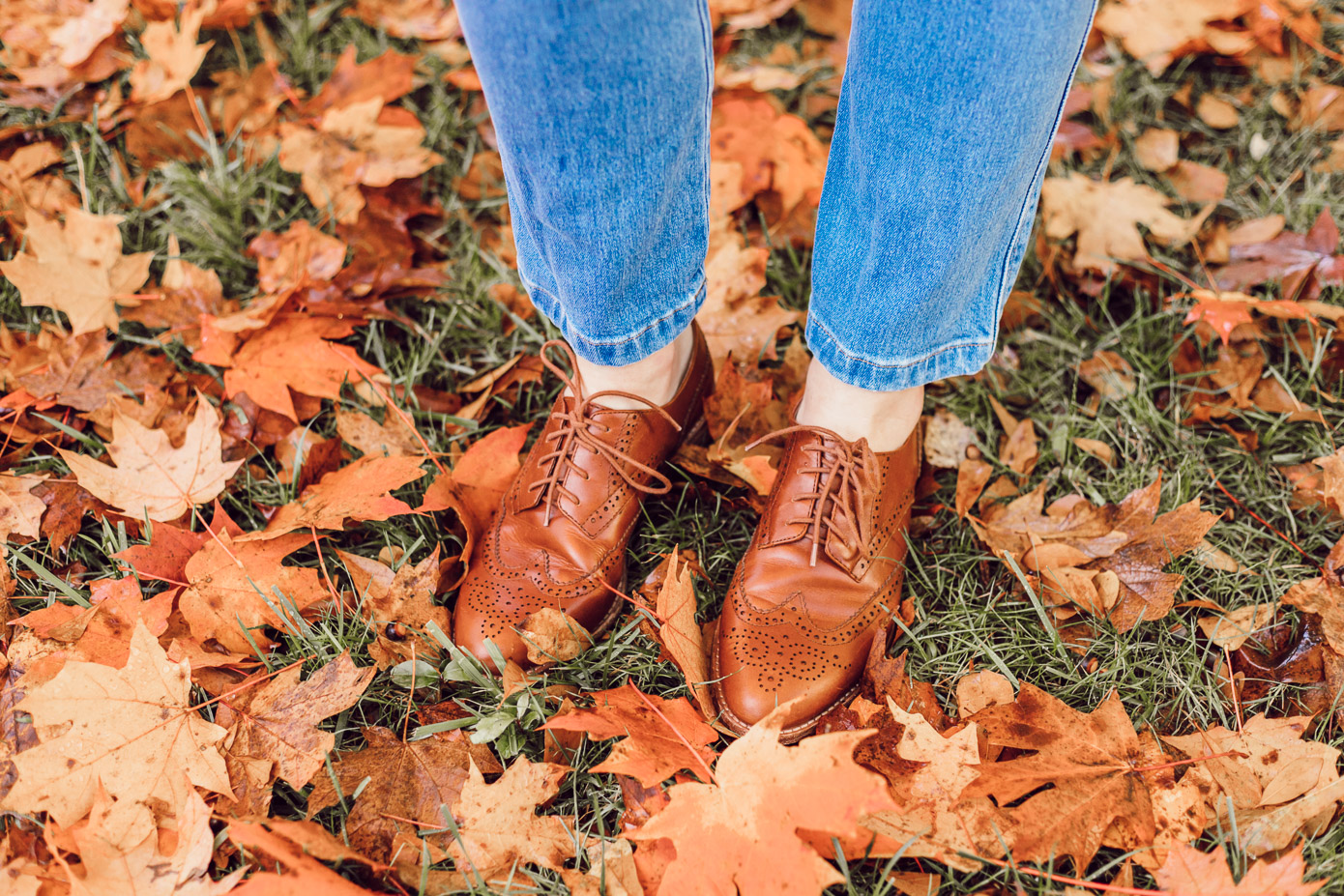 No Fail Thanksgiving Outfit | Madewell Juliette Oxfords featured on Louella Reese Life & Style Blog