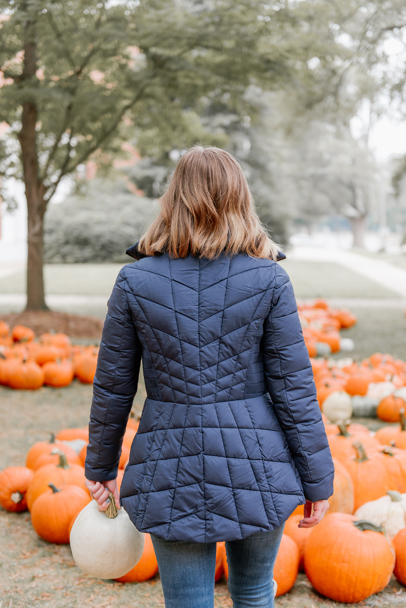 Fall Coats, Navy Puffer Jacket | Louella Reese